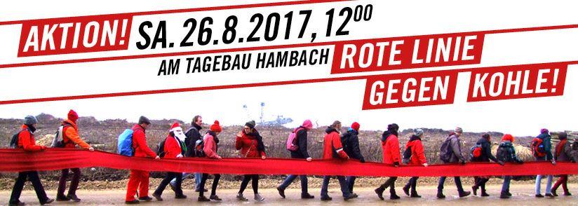 Grüner Bundestagskandidat Peter Gehrmann gibt Startschuss für Wahlkampf
